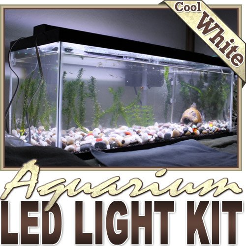 cool fish tanks lights - ft Cool White Aquarium Fish Tank White LED ...