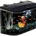 Aquarius-Aq15005-Aquarius-5-Rounded-5-Gallon-Aquarium-Kit-0