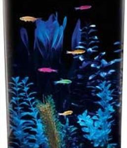 Aquarius-Aq360-3g-Gloview-3-Gallon-Aquarium-Kit-0