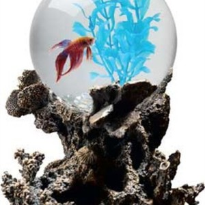 Aquarius-OT1001-Betta-Treasures-1-Gallon-Coral-Aquarium-0