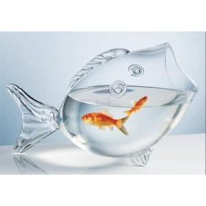 CLEAR-FISH-BOWL-CLEAR-FISH-SHAPED-BOWL-0
