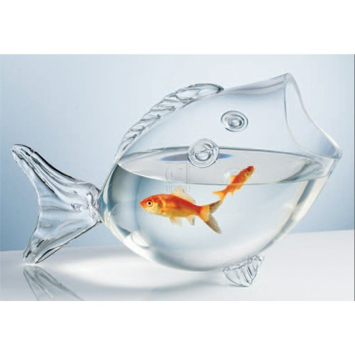 Clear fish bowl clear fish shaped bowl fish tank for How to make a fish bowl