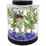 Tetra-LED-Half-Moon-Betta-Kit-11-Gallon-0