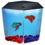 Aquarius-AQ11204-BettaView-Brite-Corner-Tank-0