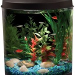 Aquarius-AQ35000BLK-35-Gallon-Aquarium-Kit-0