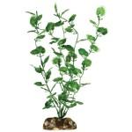 Aqueon-09809-Begonia-Aquarium-Plant-9-Inch-0