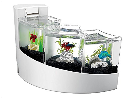 Aqueon kit betta falls fish tank equipmentfish tank for Betta fish tanks amazon