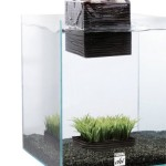 Fluval-Chi-Aquarium-Kit-5-Gallon-0