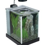 Fluval-SPEC-Desktop-Glass-Aquarium-2-gallon-0