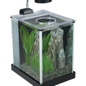 Fluval-SPEC-Desktop-Glass-Aquarium-2-gallon-0