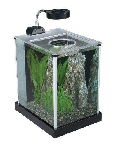 ... Glass Aquarium, 2-gallon Fish Tank EquipmentFish Tank Equipment