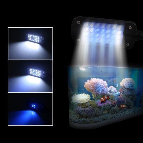 Gadgetzone us seller 28 led 2w white blue light fish tank for Blue light for fish tank