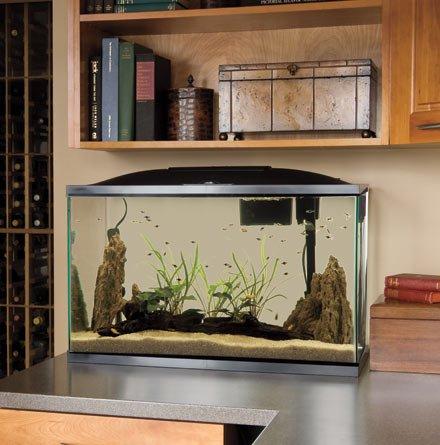 Marineland aquaria amlpfk20b biowheel aquarium kit with for 55 gallon fish tank led light hood