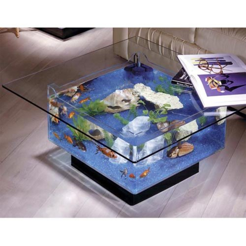 Aqua square coffee table 25 gallon aquarium fish tank for Square fish tank