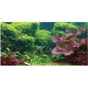 Aquatic-Creations-Static-Cling-Aquarium-Background-36-by-18-Inch-Tropical-0