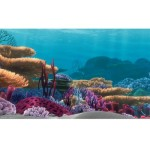 Penn-Plax-Finding-Nemo-Ocean-Floor-Scenery-Background-10-Gallon-0