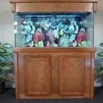 RJ-Enterprises-ARJ00239-Birch-Wood-Aquarium-Canopy-48-by-13-Inch-Honey-0