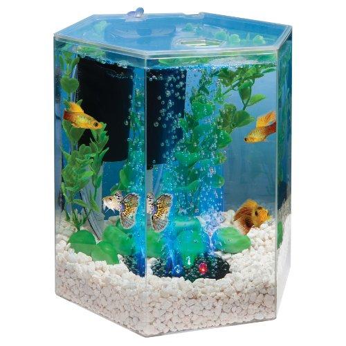 Tetra 29040 Hexagon Aquarium Kit with LED Bubbler, 1-Gallon   Fish Tank EquipmentFish Tank Equipment