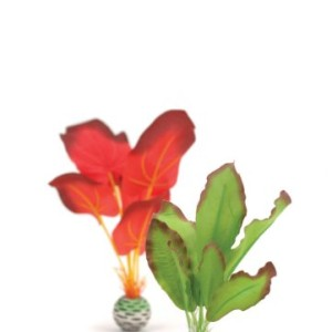 biOrb-Silk-Plant-Pack-Small-RedGreen-2-Pack-0