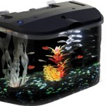 Aquarius-Aq15005g-Glofish-5-Rounded-Front-Aquarium-Kit-0