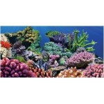 Aquatic-Creations-Static-Cling-Aquarium-Background-36-by-18-Inch-Coral-0