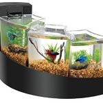 Aqueon-Kit-Betta-Falls-for-Aquarium-Black-0