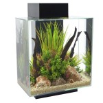 Fluval-Edge-12-Gallon-Aquarium-with-42-LED-Light-Black-0
