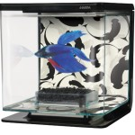 Hagen-Marina-Betta-Aquarium-Starter-Kit-YingYang-0