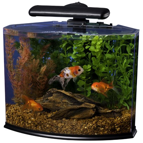 Tetra crescent acrylic aquarium kit energy efficient leds for Tetra fish tank