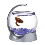 Tetra-29237-Betta-Bowl-Silver-0