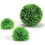 biOrb-Aquatic-Topiary-Packs-3-Plants-0