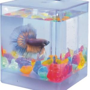 AA-Aqua-Box-Betta-1-Aquarium-0