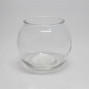 Clear-Glass-Fish-Bowl-with-Lip-6W-x-5H-0