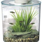 Hagen-Marina-360-Degree-Aquarium-Starter-Kit-0