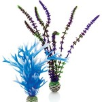 biOrb-Plant-Pack-BluePurple-2-Plants-0