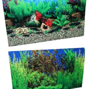 20-X-32-Fish-Tank-Background-Lakeriver-Double-Sided-0
