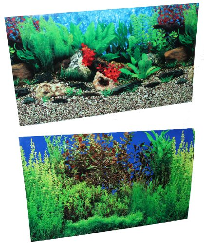 20 x 32 fish tank background lake river double sided for Double fish tank