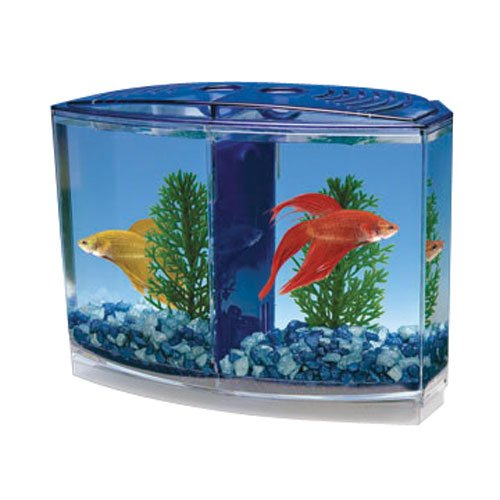 Penn plax twin beta bow front kit for aquarium fish tank for Betta fish for sale at walmart